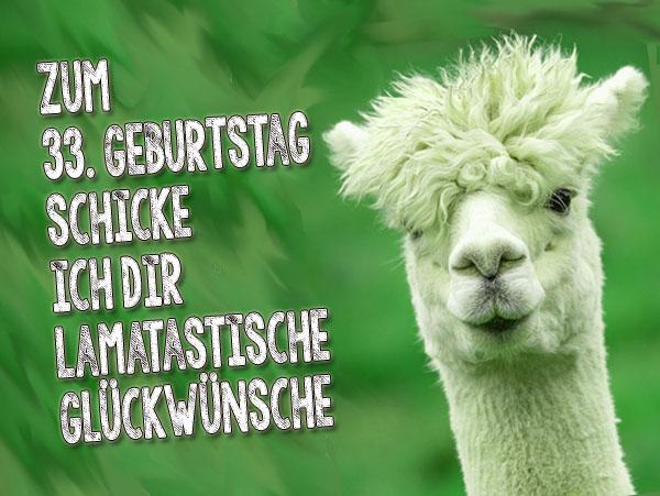 Lama bringt Grüße zum 33. Geburtstag