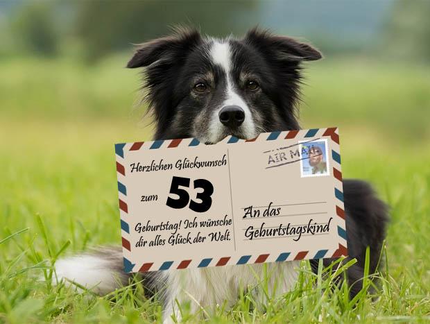 Tierische Glückwünsche zum 53. Geburtstag