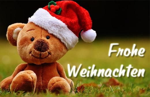 Teddy wünsche frohe Weihnachten